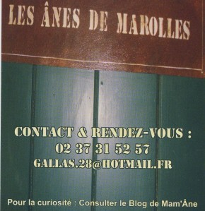 tel mail blog