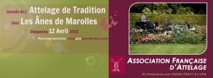Attelage de Tradition à Marolles