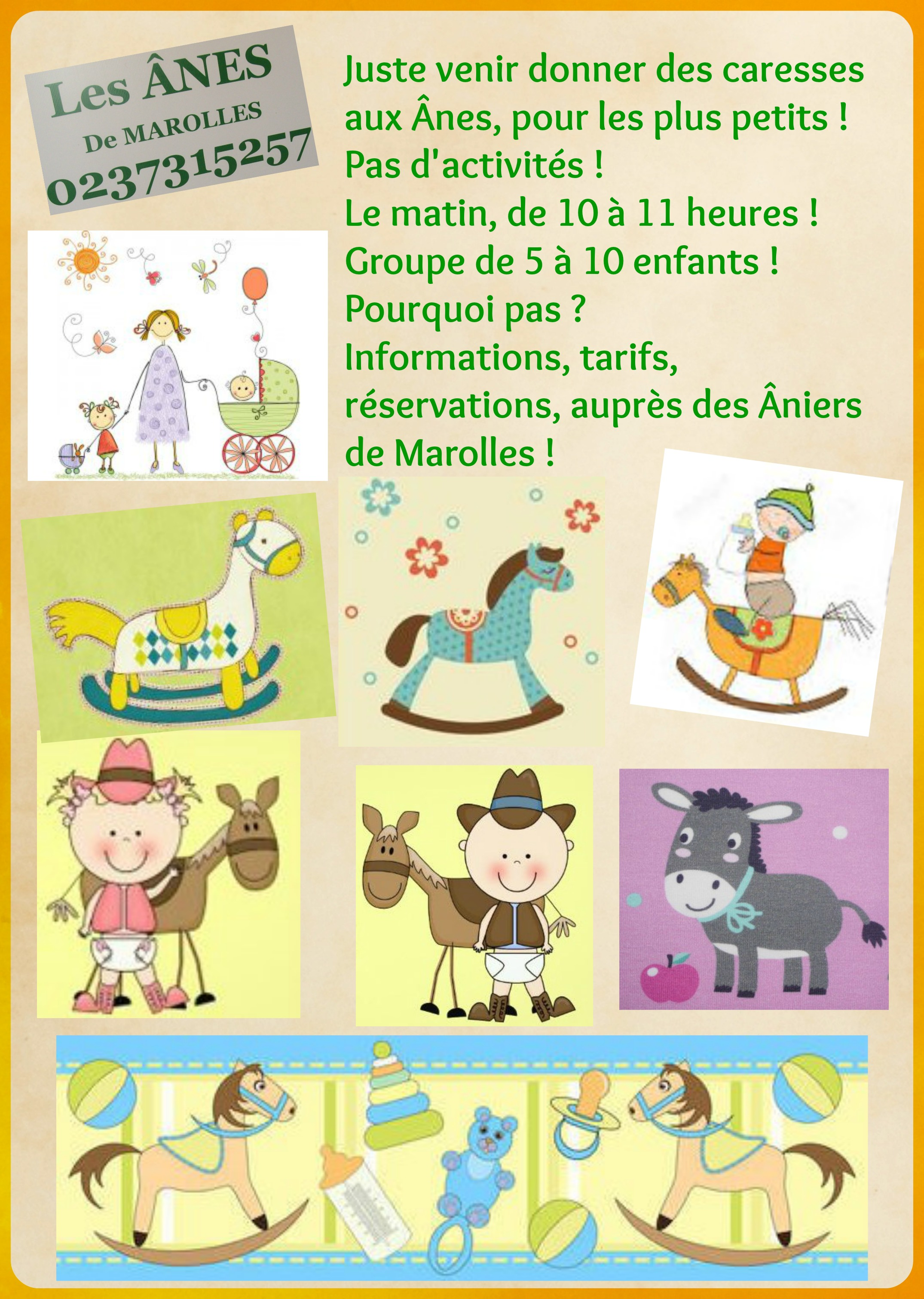 Affiche Bb Nounou Les ânes De Marolles