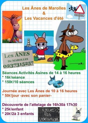 affiche vacances d'été ânes de marolles