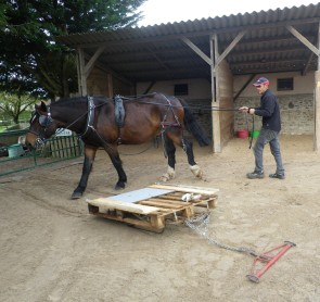 twist entraînement (11)