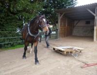 twist entraînement (12)