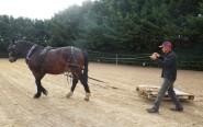 twist entraînement (16)
