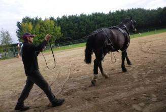 twist entraînement (2)