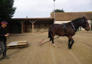 twist entraînement (24)