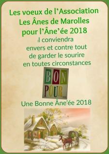 affiche bonne année 2018