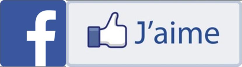 """Résultat de recherche d'images pour """"facebook j'aime"""""""