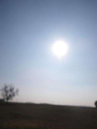 maréchal 18 octobre ânes cheval soleil ciel bleu (40)