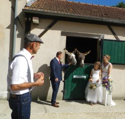 mariage tom franklin vanessa cyril lilas (37)