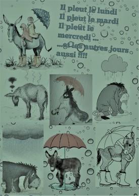affiche Âne il pleut le lundi .... pluie...........